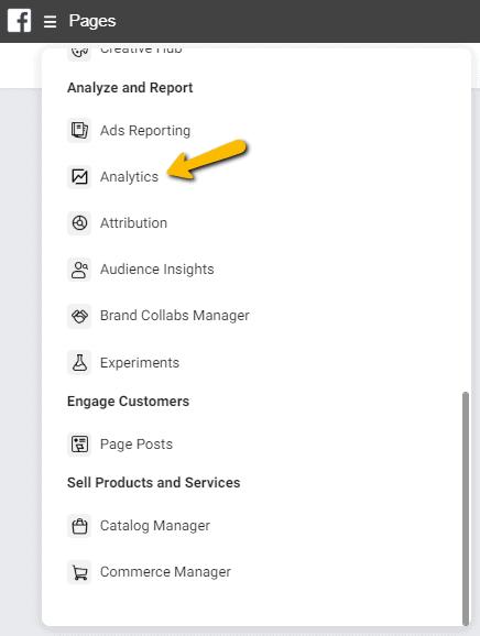 Faceboook Analytics via Business Manager