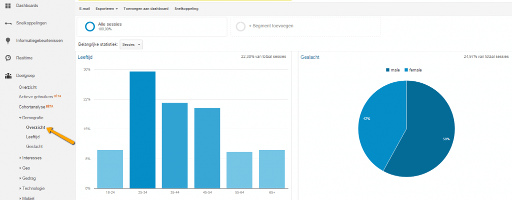 Google Analytics demografie