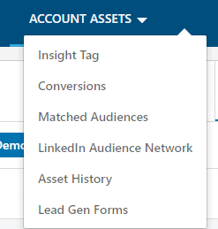 linkedIn advertising account assets.